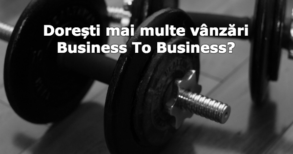 vanzari business to business