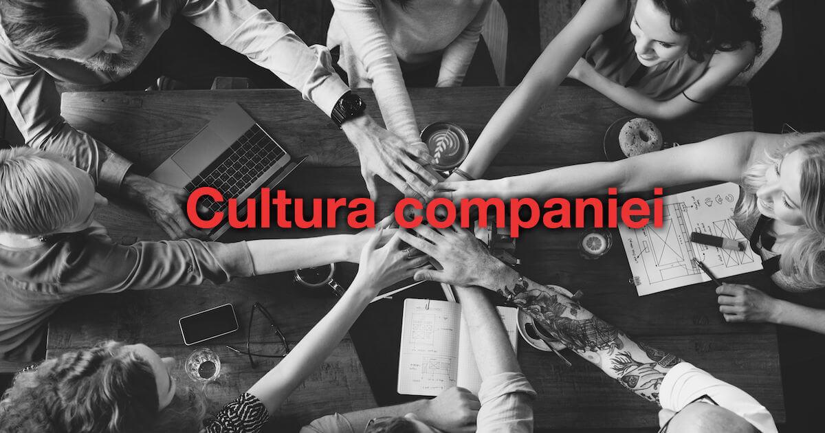 Cultura companiei